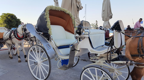 Διακόσμηση άμαξας με γυψόφυλλο και χαμομήλι