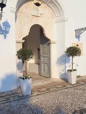 Διακόσμηση ναού με ελιές