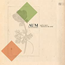 AUM Grand ensemble you've never listened to the Wind