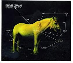 Edouard Perraud Synaesthetic trip