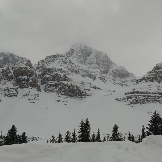 The Road to Jasper