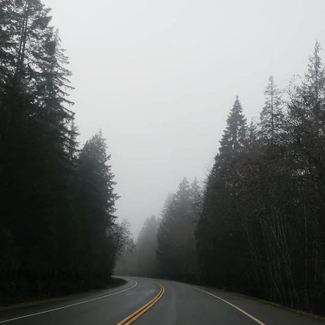 The Road to Tofino