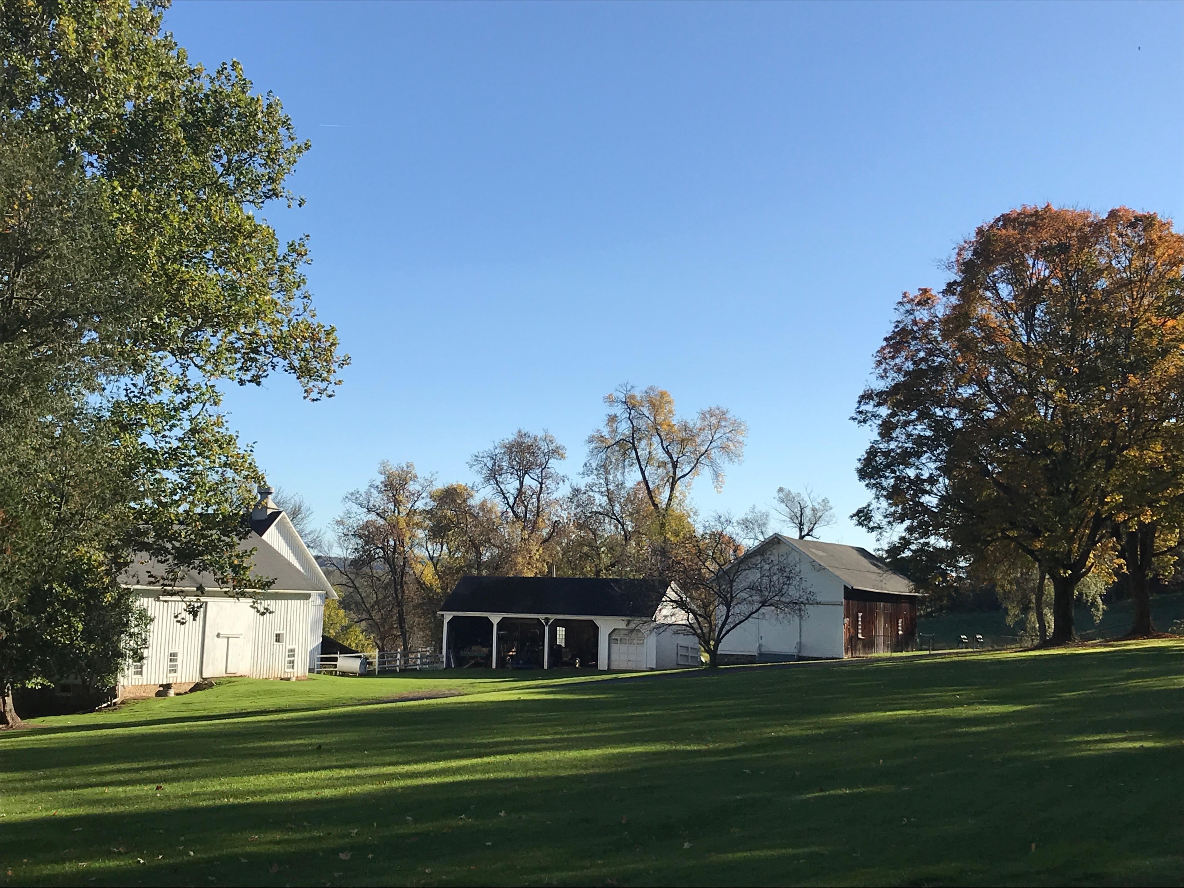 Side Lawn At Harding Farm
