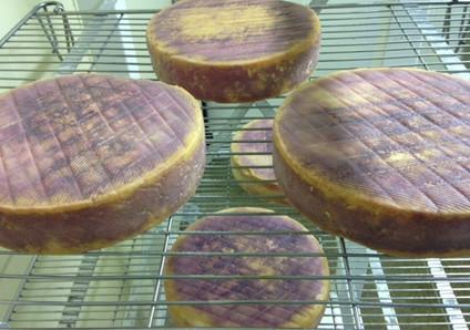 Púrpura por Proteus