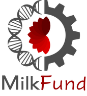 logo mikfund.png