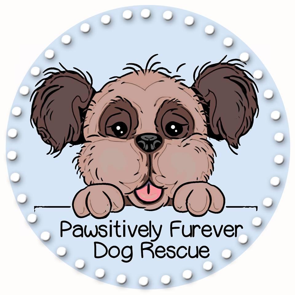 Dog adoption | United States | Pawsitively Furever Dog Rescue