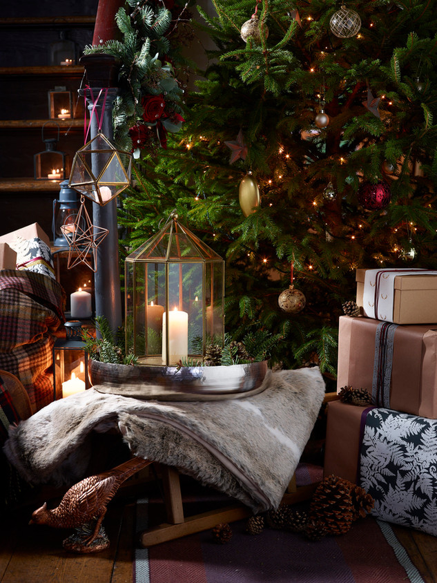 Christmas tree & sledge 0015.jpg