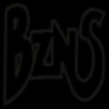 Bizness Suit button logo
