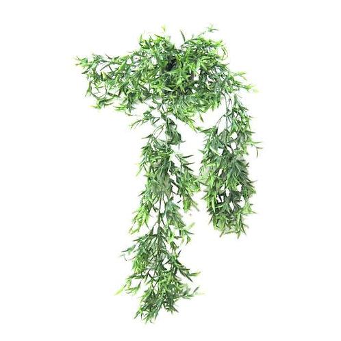 עציץ נשפך פרש ירוק