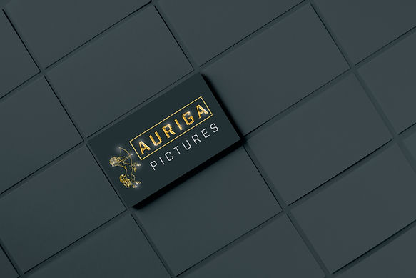 aurigapicture_logo_mock_up.jpg