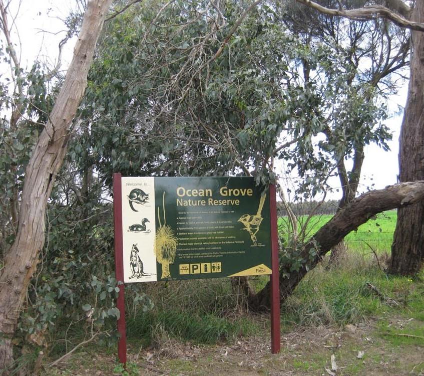 Ocean-Grove-Natural-Park (004)