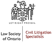 Law Society of Ontario Civil Litigation