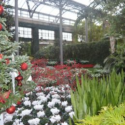 Longwood, Pa. Field of Floral Dreams, Longwood Gardens