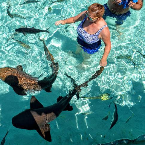 Compass Cay, Exuama, Bahamas