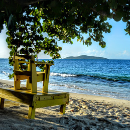 Christiansted, St. Croix - Big Beard's Tour Is A Must If You Visit