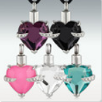 Hold My Heart Stainless Steel Cremation Jewelry
