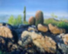 Arizona textures copy.jpg