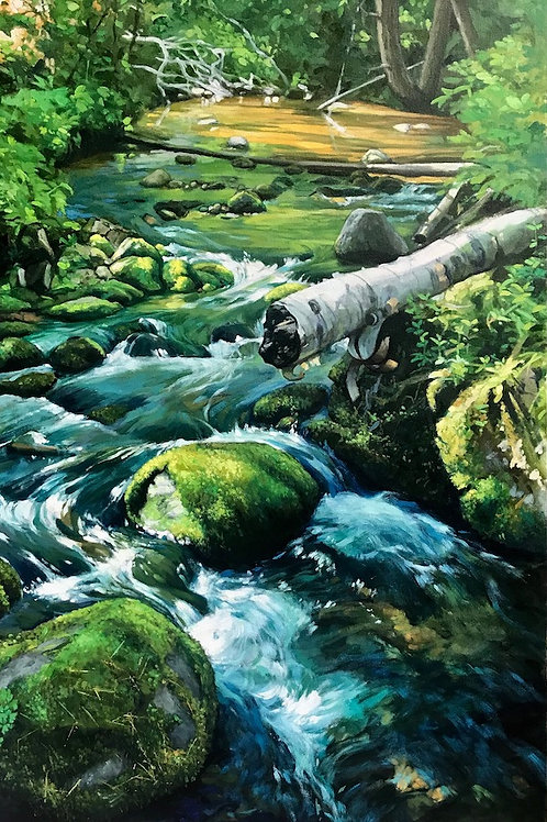 Dead River Tributary - oil
