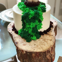 Outdoor Adventure Cake