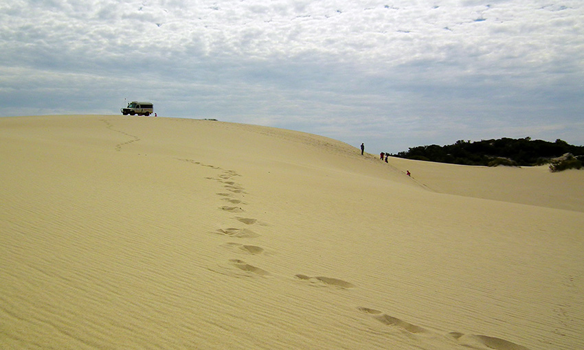 Explore the Yeagerup Inland Dunes