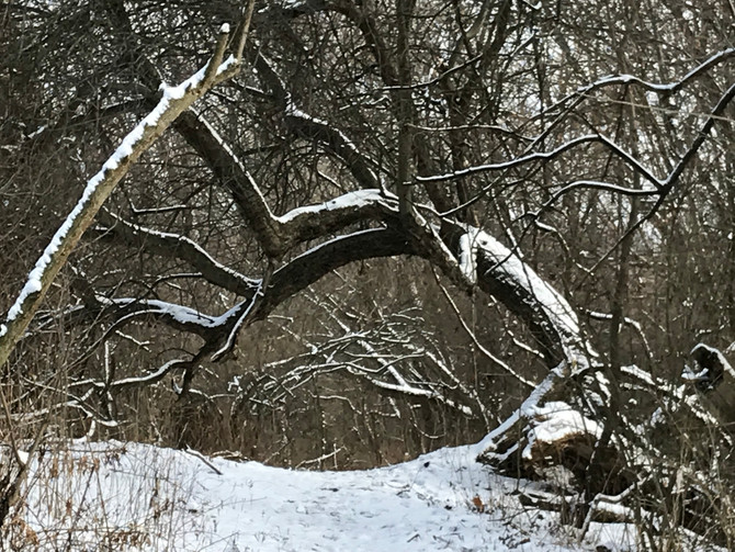 Winter Hiking - Once the Weather Breaks