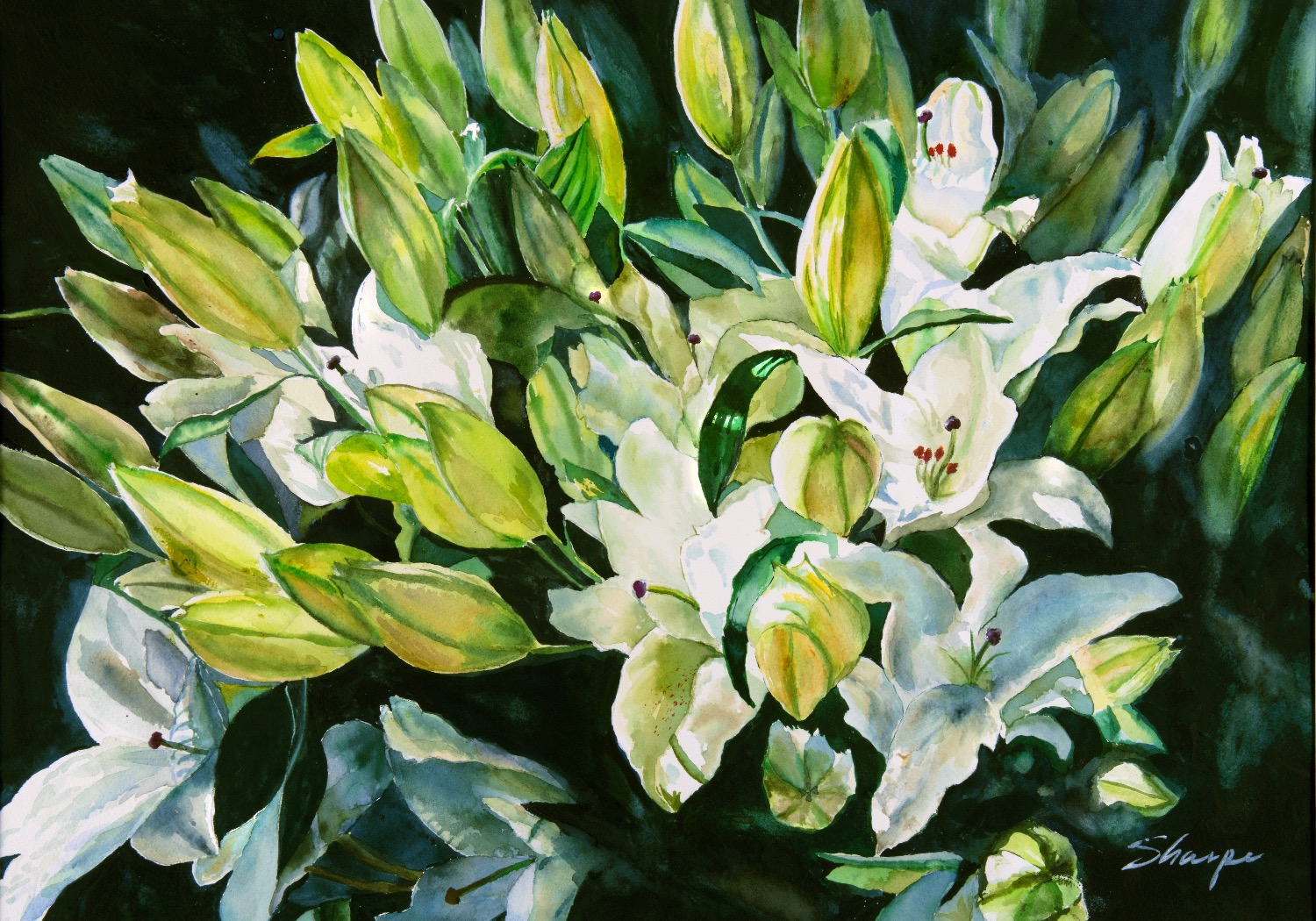Lilies for Printing_edited
