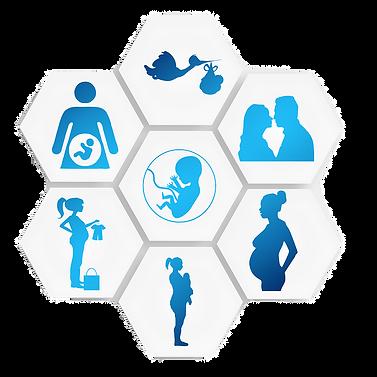 pregnancy-1749858_960_720_edited.png