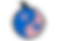 logo%20ceki-Final%202_edited.png