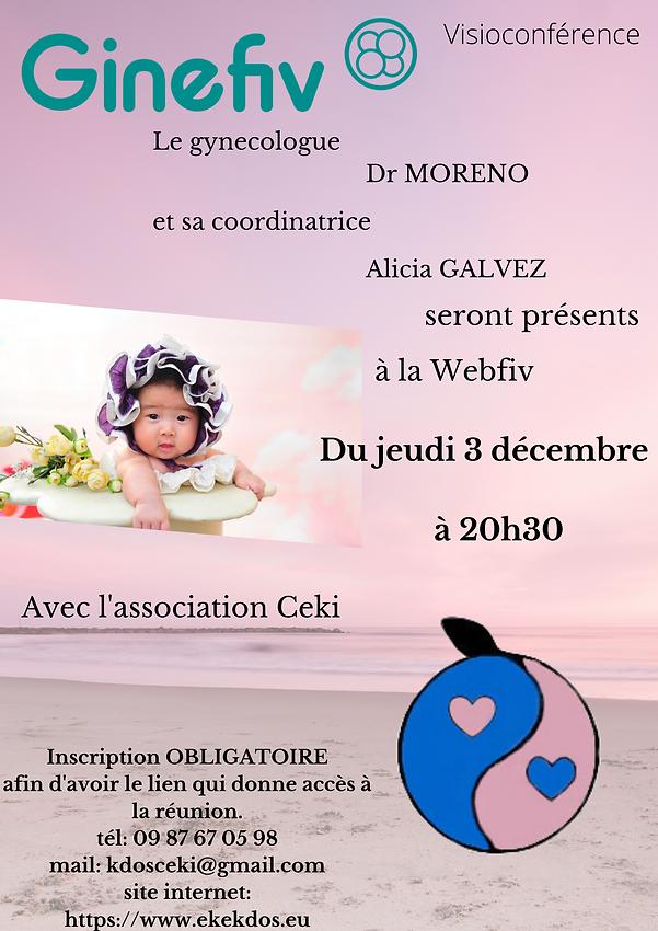 Webfiv_Ginefiv_le_3_décembre.png