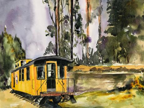Redwood Ride