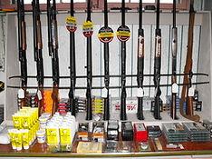 Firearms, Guns