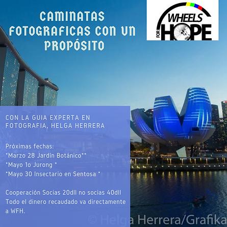 Caminatas_de_fotografía_solidarias_con_H