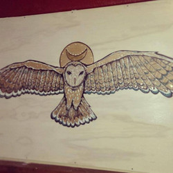 Owl for The Cave