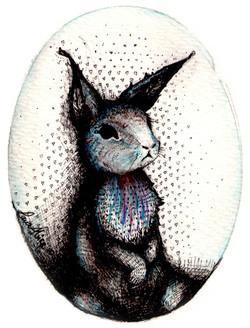 'If Peter were a Rabbit'