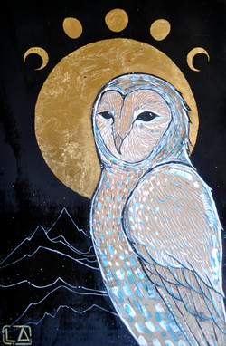 'The Way of the Owl'