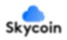 Skycoin Logo-V.png