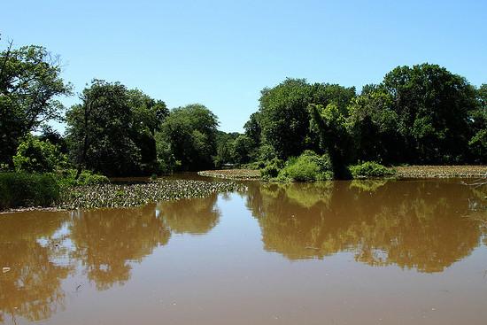 Anacostia River, tributary of the Potomac River, Washington, DC