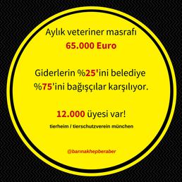 Paraları var, yaparlar... diye düşünebilirsiniz. %75'i bağışçılarla böylesine bir düzenin nasıl oluştuğuna bir bakın!  Türkiye'de hayvanseverlerimiz ve bağışçılarımız var. Neden böylesi bir sistemde hayvanlarımızı barındırmayalım. Lütfen baktıklarınızı böyle değerlendirmeye çalışın.