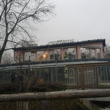 Burası kedi evinin karşısı... Barınak bir çok eklemeyle oluştuğu için yapılar farklı farklı.... — Tierschutzverein München