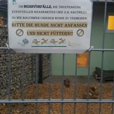 Dış duvarları taş ile örtülmüş... Bu bile onların bireyselliğine saygıyı gösteriyor.  Beslenmemesi ve dokunulmamasına dair uyarıyı da kapıda görüyorsunuz. — Tierschutzverein München'