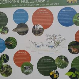 Binanın girişinde eğitici bir tabela.... — Tierschutzverein München