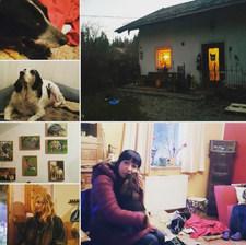 Münih'ten 160 km uzakta Yorgun Patiler Barınağına gittik. Yaşı 10'un üstünde, hasta, yürüyemeyen, başka ülkelerden kurtarılmış ve sahiplenilmesi beklenilmeyen köpeklerle tanıştım. Tatlı bir tecrübeydi. Geldiğimden beri ilk kez ellerim köpek kokuyor😊... Hangi ülkede olursanız olun, onlarla iletişim kurduğunuz tek bir dil var...❤