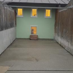Bu beyaz kardeşlerin bahçesi... — Tierschutzverein München'