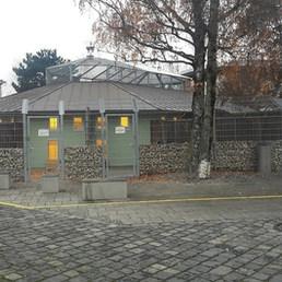 Kanatlıların kafesinden çıkınca genel görünüş... — Tierschutzverein München