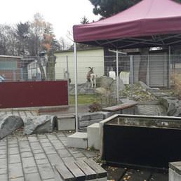 Keçi bile var.... — Tierschutzverein München