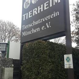 Burası Munih Hayvan Hakları Derneği ve Barınağı... — Tierschutzverein München'