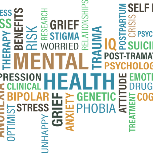 Level 2 First Aid for Mental Health