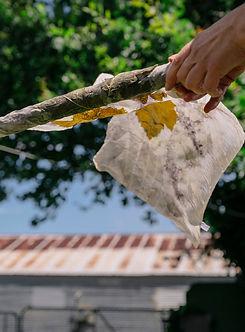 Unwrapping eco-printed silk at Perpetua Studio