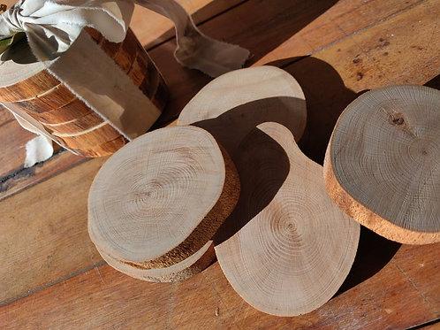 Foraged Wood Coasters - set of 6