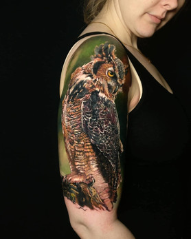 Colour Tattoo Owl by Mario Gregor